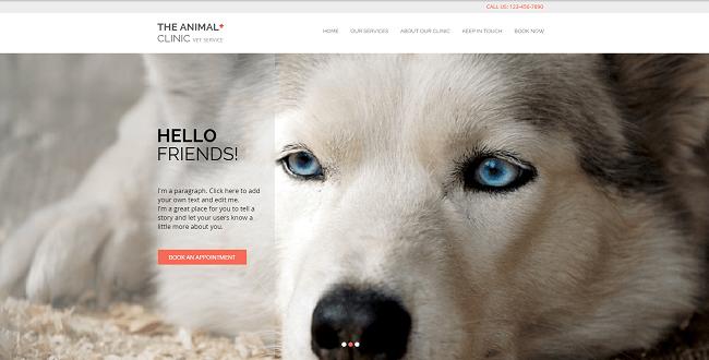 Animal Clinic Template de Site   WIX