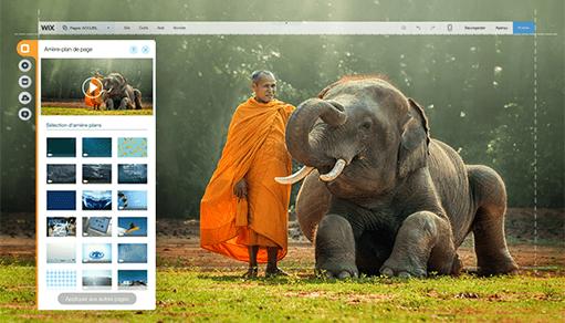 Des photographies gratuites disponibles pour votre site Wix
