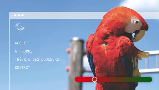 La théorie des couleurs appliquée à votre site internet