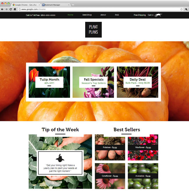 Template Wix : The Seed Shop